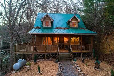 Jackson County Single Family Home For Sale: 201 Kimberly Lane