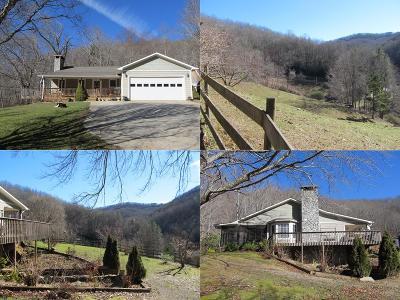 Sylva Single Family Home For Sale: 3577 Pumpkintown Rd