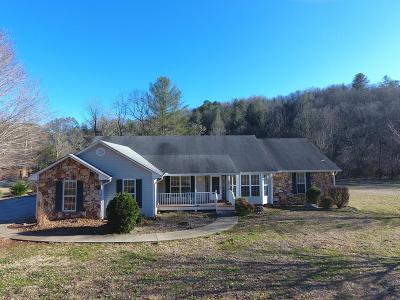 Franklin Single Family Home For Sale: 230 Stonecreek Drive