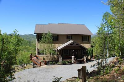Bryson City Single Family Home For Sale: 166 Charleston Overlook