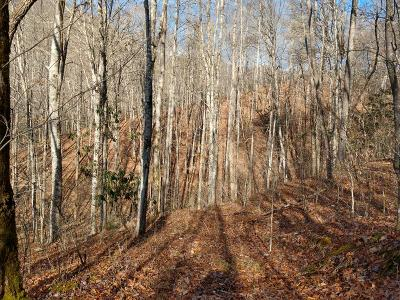Otto Residential Lots & Land For Sale: 00 Hickory Hollow Drive