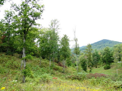 Residential Lots & Land For Sale: 00 Fox Run Rd.
