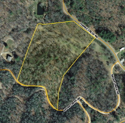 Franklin, Otto Residential Lots & Land For Sale: 00 Younce Creek Road