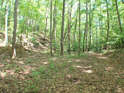 Franklin, Otto Residential Lots & Land For Sale: 00 W. Old Murphy Road