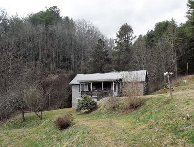 Bryson City Single Family Home For Sale