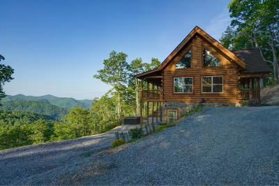 Bryson City Single Family Home For Sale: 430 Freedom Way
