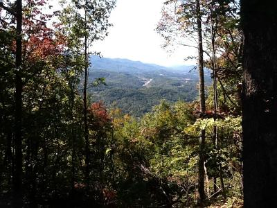 Franklin, Otto Residential Lots & Land For Sale: Lot 222 Lyle Mountain Trail