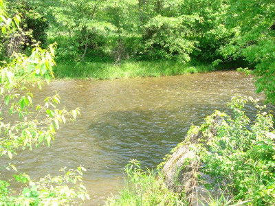 Macon County Residential Lots & Land For Sale: 000 River Road