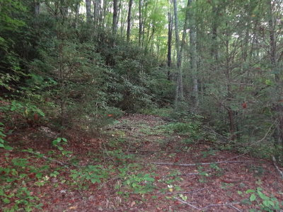 Macon County Residential Lots & Land For Sale: 00 Mountain Air Road