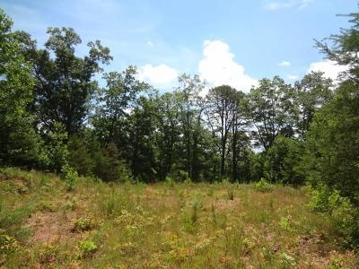 Macon County Residential Lots & Land For Sale: 00 Windy Ridge Road