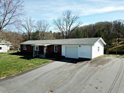 Sylva Single Family Home Pending/Under Contract: 31 Astro Drive