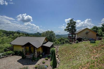 Bryson City Single Family Home For Sale: 100 Charleston Ridge