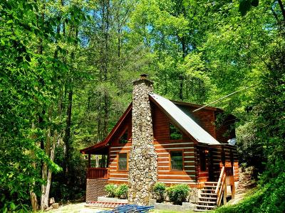 Bryson City Single Family Home For Sale: 362 Mountainside Drive