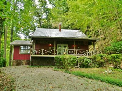 Macon County Single Family Home For Sale: 609 Summit Road