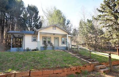 Single Family Home For Sale: 1686 Ellijay Road