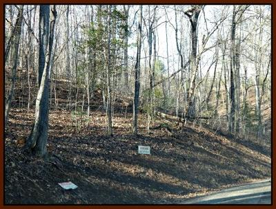 Macon County Residential Lots & Land For Sale: Flaming Azalea Rd.