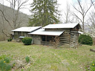Jackson County Single Family Home For Sale: 794 Nicholson Cove Rd.