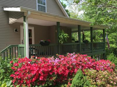 Bryson City Single Family Home For Sale: 48 Eh Bailey Road