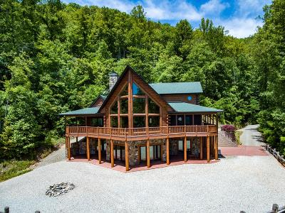 Bryson City Single Family Home For Sale: 176 Noland Divide