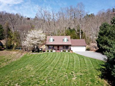 Sylva Single Family Home For Sale: 161 Rock Field Way