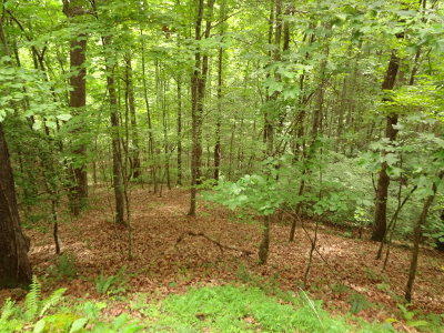 Franklin, Otto Residential Lots & Land For Sale: 00 Deerwood Drive