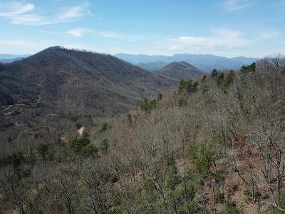 Franklin, Otto Residential Lots & Land For Sale: Lot 90 Overlook Ridge Rd