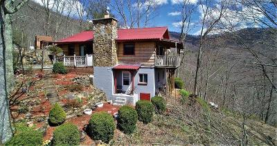 Sylva Single Family Home For Sale: 4261 Pumpkintown Rd