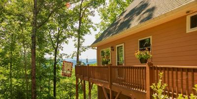 Franklin NC Single Family Home Pending/Under Contract: $289,900