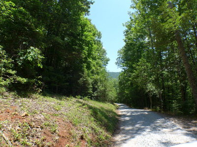 Franklin, Otto Residential Lots & Land For Sale: 00 Foxwood Drive