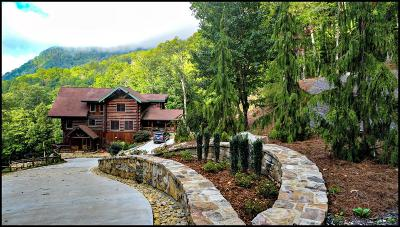 Cullowhee, Sylva, Webster, Whittier, Franklin, Otto Single Family Home For Sale: 965 Newbridge Road
