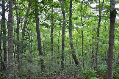 Franklin, Otto Residential Lots & Land For Sale: Lot 18 Deerwood Dr.