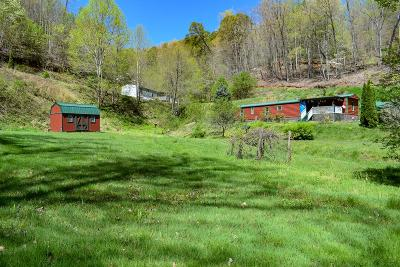 Bryson City Single Family Home For Sale: 397 Mount Keys Dr