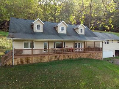 Macon County Single Family Home For Sale: 166 W. Lowery Lane