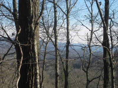 Macon County Residential Lots & Land For Sale: 00 Whippoorwill Trail