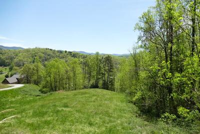 Macon County Residential Lots & Land For Sale: 00 Mane Loop Road
