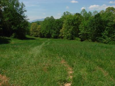 Franklin, Otto Residential Lots & Land For Sale: 00 Pauline Ave