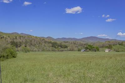 Franklin, Otto Residential Lots & Land Pending/Under Contract: 00 Riverbend Road