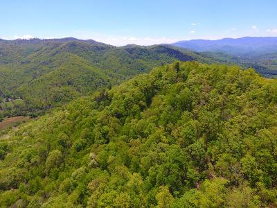 Otto Residential Lots & Land For Sale: Tract 2 Hickory Gap Rd.