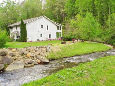 Topton Single Family Home For Sale: 304 Otter Creek Rd