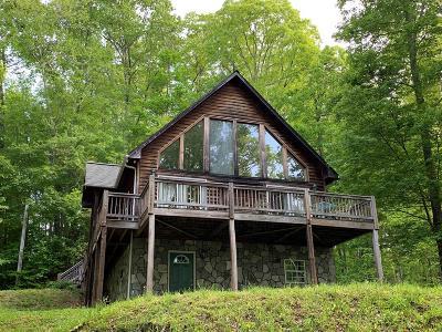 Sylva Single Family Home For Sale: 1883 Falling Leaf Trail
