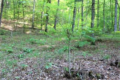 Franklin, Otto Residential Lots & Land For Sale: 00 S. Skeenah