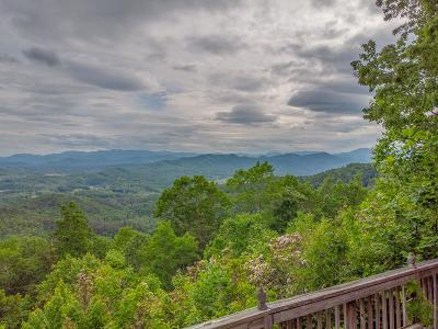 Franklin NC Single Family Home For Sale: $195,000
