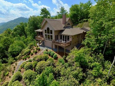 Jackson County Single Family Home For Sale: 321 Summitt