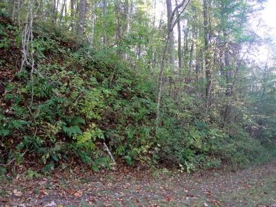 Macon County Residential Lots & Land For Sale: 00 Whisper Mountain Road