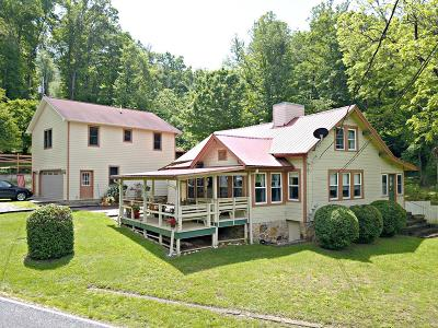 Sylva Single Family Home For Sale: 1244 Fairview Road