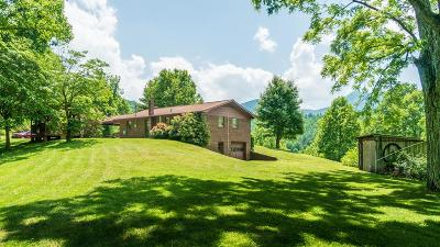 Sylva Single Family Home For Sale: 168 Tathams Creek Road