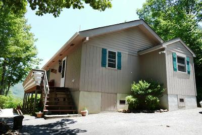 Otto Single Family Home For Sale: 608 Tessentee Woods Road