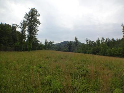 Franklin, Otto Residential Lots & Land For Sale: 1260 Clarks Chapel Road