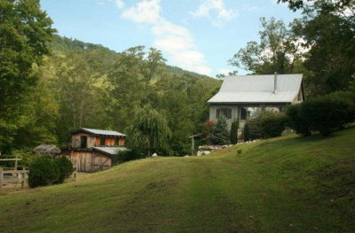 Macon County Single Family Home For Sale: 391 Natural Bridge Rd.
