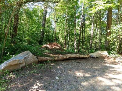 Franklin, Otto Residential Lots & Land For Sale: 000 Dean Falls Trail